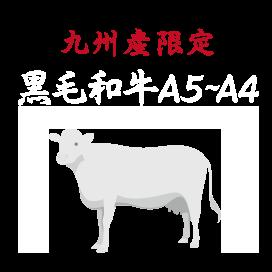 九州産限定 鹿児島黒毛和牛